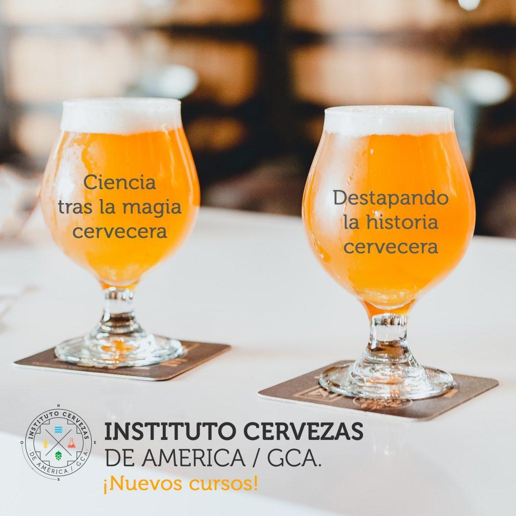 instituto de cervezas de america