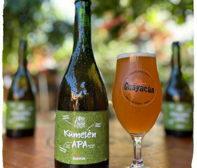 Guayacán Cerveza Experimental
